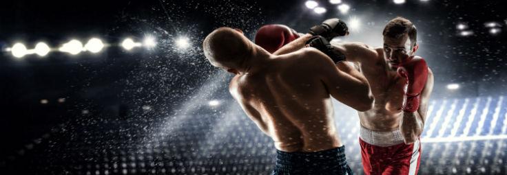 champion-boxer